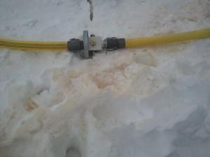 2012-12-24-SnowYellow1