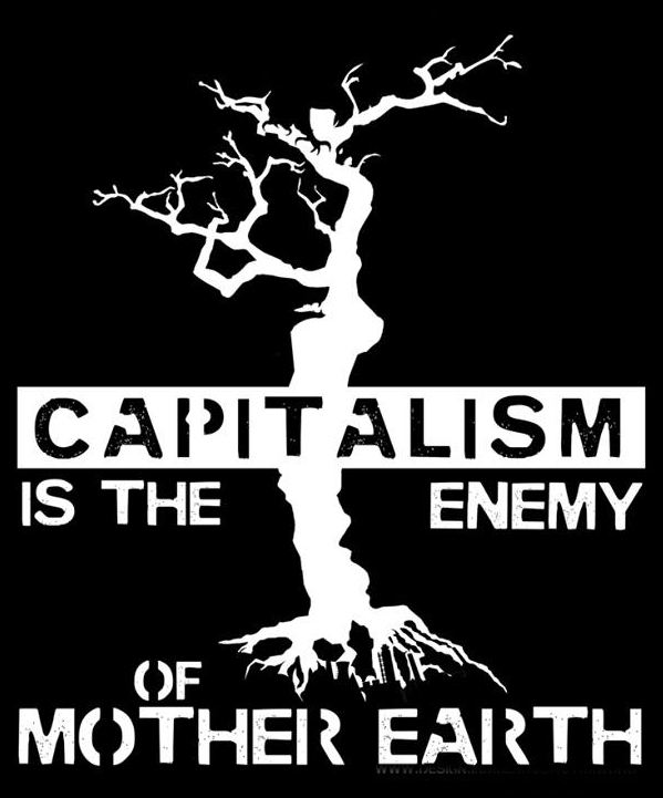 kleecapitalismistheenemysmall